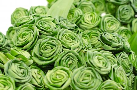 pandanus: Rose made from pandan leaves