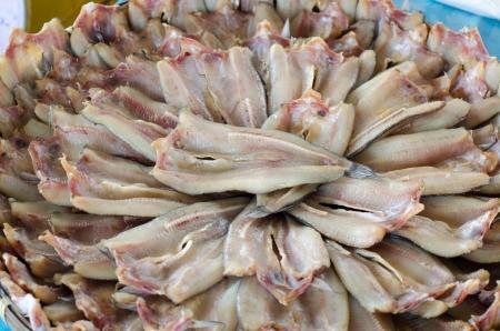 snakehead: Striped snakehead fish in Thailand market
