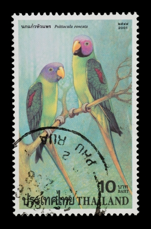 roseate: THAILAND - CIRCA 2001  A postage printed in Thailand show image of Psiiacula roseate  from the series   Parrot , circa 2001 Editorial