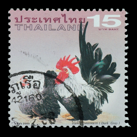 THAILAND - CIRCA 2003  A postage printed in Thailand show image of  Dark gray from the series   Bantam  , circa  2003 photo