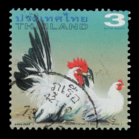 THAILAND - CIRCA 2003  A postage printed in Thailand show image of Black Tailed White from the series   Bantam  , circa  2003 photo