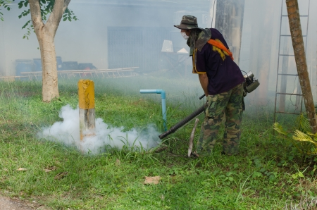 disease control: Fumigate mosquito-killing to prevent disease Stock Photo