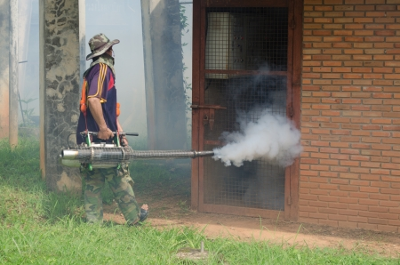 Fumigate mosquito-killing to prevent disease photo