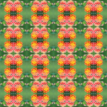 lantana: lantana camara flower seamless pattern background