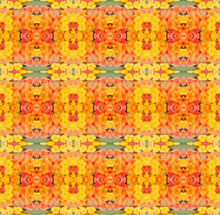 lantana camara: lantana camara flower seamless pattern background