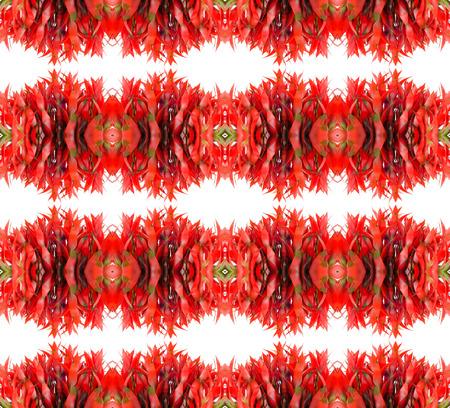 guzmania: Bromeliad seamless pattern background Stock Photo