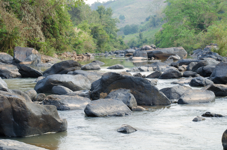 streamlet: streamlet in rainforest ,Thailand