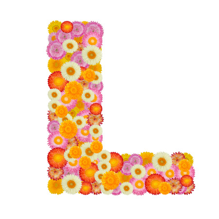 letter l: Letter L alphabet with straw flower isolated on white background