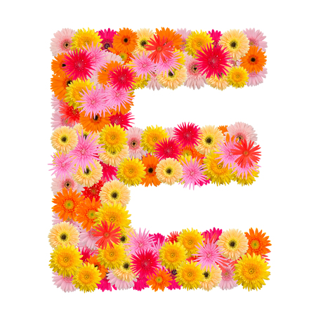 e alphabet: Letter E alphabet with gerbera  isolated on white background Stock Photo
