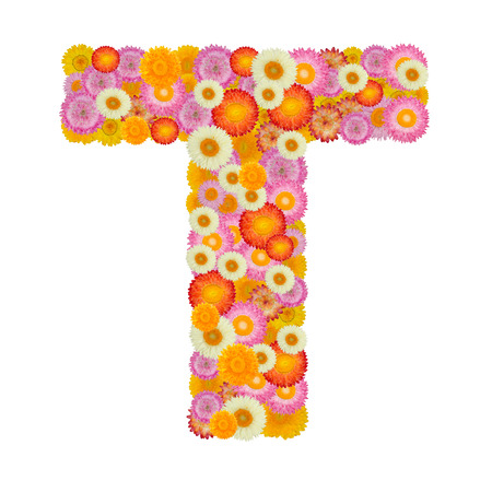 Letter T alphabet with straw flower isolated on white background Stock Photo
