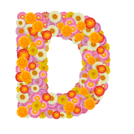 d: Letter D alphabet with straw flower isolated on white background