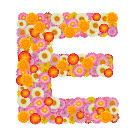 e alphabet: Letter E alphabet with straw flower isolated on white background Stock Photo