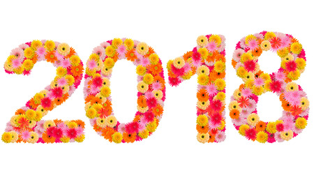 0 1 year: New year 2018 made from gerbera flowers isolated on white background