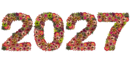 neoregelia: New year 2027 made from bromeliad flowers isolated on white background
