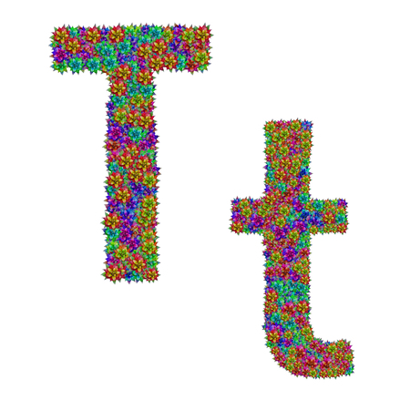 letter T made from bromeliad flowers isolated on white background with clipping path
