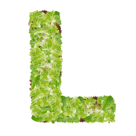Letter L alphabet with hydroponics leaf  ABC concept type as logo isolated on white background