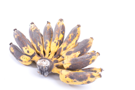 Bunch of Black Ripen Wild Banana, Asian Banana or Cultivated Banana isolated on white background