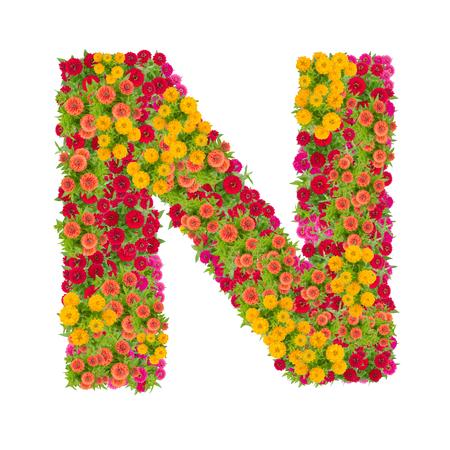 Alphabet des Buchstaben N gemacht vom Zinnia Blume ABC-Konzepttyp als Logo. Typografiedesign mit Beschneidungspfad