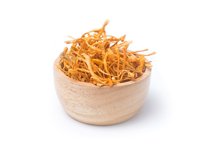 Dried cordyceps militaris isolated on white background. chong cao, dong chong cao