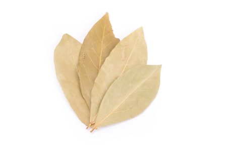 dry bay leaves isolated on white background.