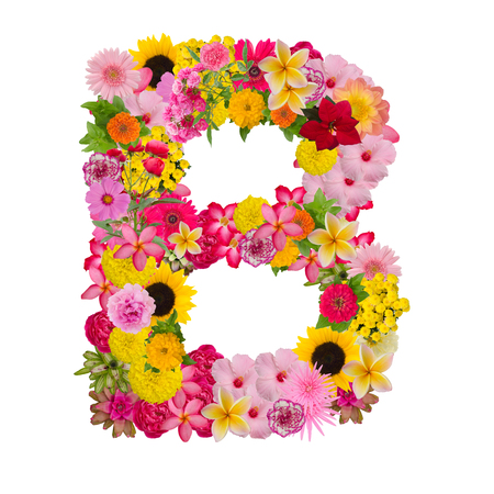 Letter B alphabet with flower ABC concept type as logo isolated on white background. With clipping path