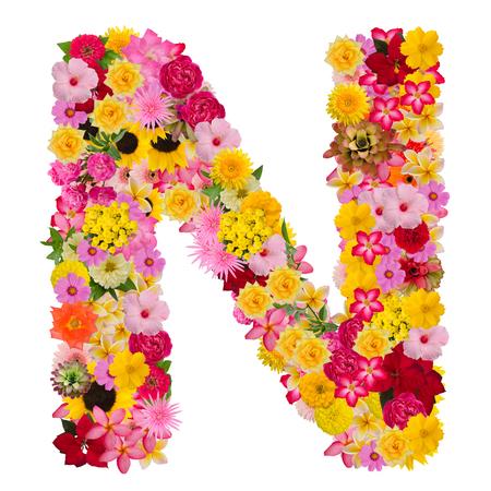 Alfabet litery N z kwiatem typu koncepcja Abc jako logo na białym tle. Ze ścieżką przycinającą