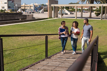college campus: Group of students walking on school campus Stock Photo