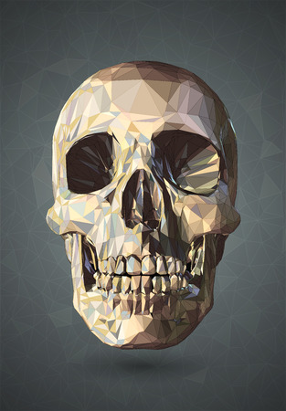macabre: 3D Skull low poly with graphic wireframe line on gray background