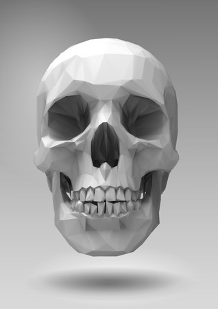 three dimension shape: Low poly skull  in 3d realistic render look