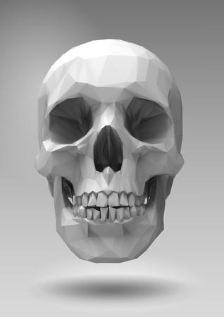 Low poly skull  in 3d realistic render look