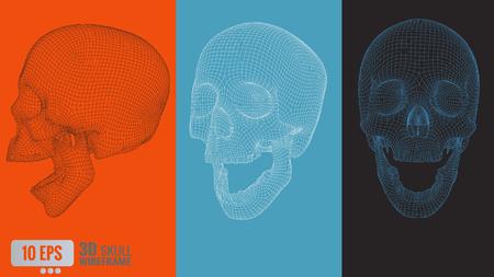 3D polygonal vector wireframe graphic skull in various view Reklamní fotografie - 62540613