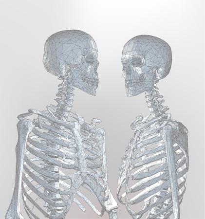 Un Par De Esqueleto Poligonal En Color Monocromático De Luz Suave ...