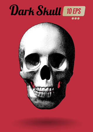 Engraving monochrome skull vector illustration in front view on red background