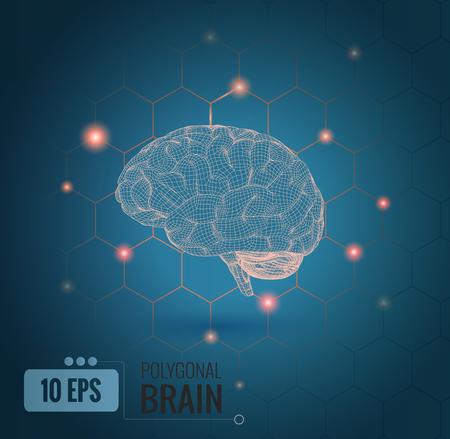 3D draadframe brein illustratie zijaanzicht met hexagon verbindingspunten op groene achtergrond
