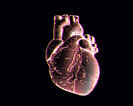 Engraving human heart illustration isolated on black background with chromatic abberation effect pink