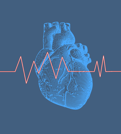 Vintage retro engraving blue human heart illustration on blue background with heart rate pulse graph Vettoriali