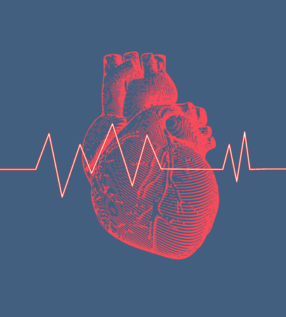 Vintage retro engraving red human heart illustration on blue background with heart rate pulse graph
