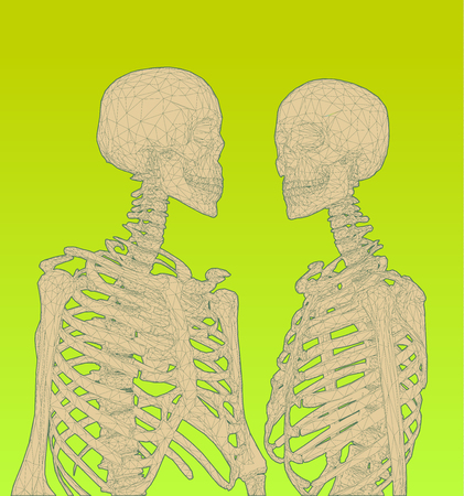 A couple of polygonal human skeleton graphic illustration in green color scheme isotlate on space BG