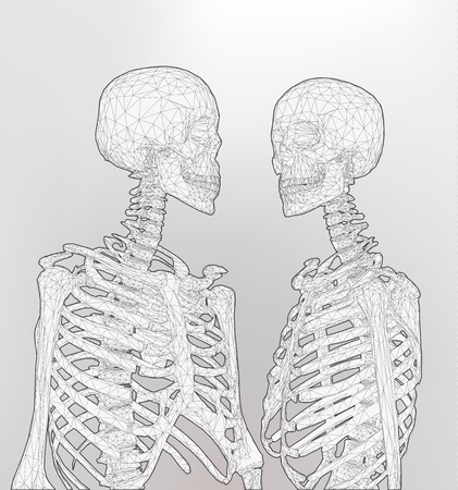 A couple of polygonal human skeleton in monochrome color on white background Иллюстрация