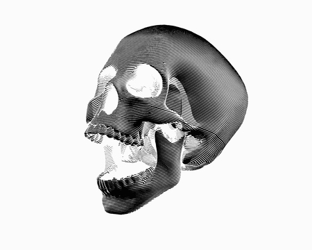 Engraving negative perspective view skull illustration screaming on white background Stock Illustratie