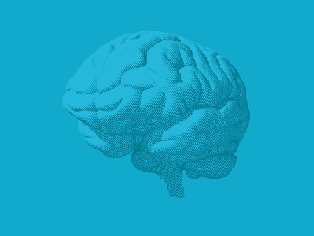 Engraving light blue brain in oblique perspective view isolated on blue background