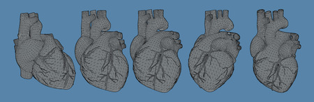 Vector human heart in flat gray shading style with triangular 3D wireframe in various view point and lighting isolated on blue background Illustration