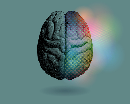 Creative concept of Left and right brain illustration with colorful on right side isolated on green background