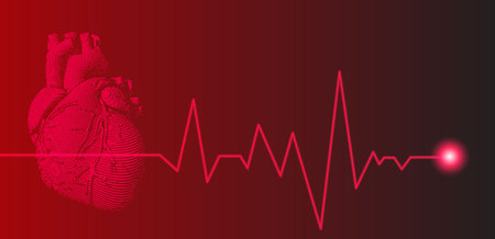 Red human heart illustration with heart rate pulse graph on dark background