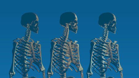 Three low poly skeleton portrait side view on blue background Illustration