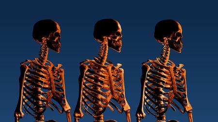 Orange low poly skeleton portrait side view on dark blue background Иллюстрация