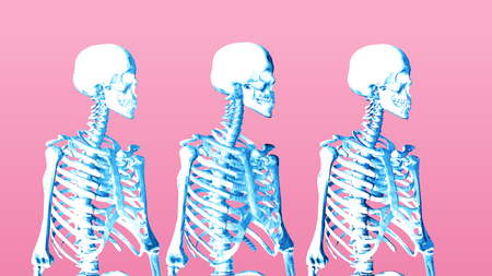 Pastel low poly skeleton portrait side view on pink background
