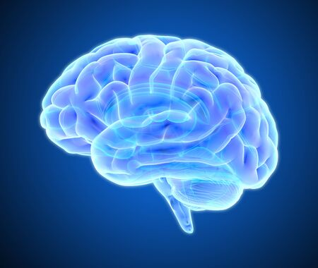 3D blue purple glowing xray brain illustration isolated on dark background with clipping path for die cut to use in any backdrop Stockfoto