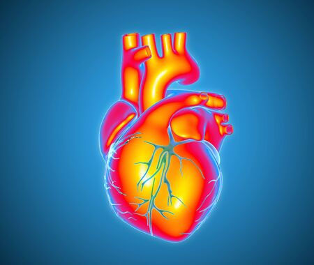 3D colorful human heart illustration in multi color for section part glowing on blue background with clipping path for die cut to use in any backdrop Stock Photo