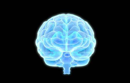 3D human brain X ray graphic scan in front view glowing on dark background Standard-Bild